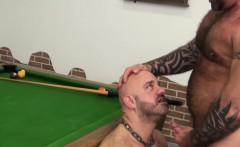 Buff Inked Bear Cumspraying Cub In Mouth