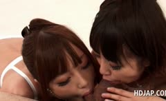 Japanese teen beauties giving blowjob in POV style