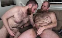 Bearded bear pounding otters tight asshole
